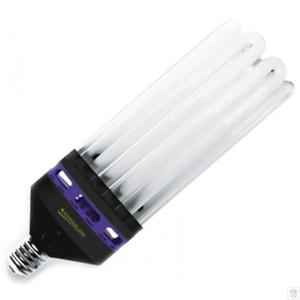 250W CFL Pro Star Bloom, för blomfas