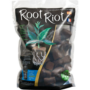 Root Riot, 100st